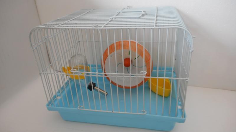 簡易型鼠籠(綠.粉.藍)